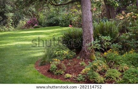 Dappled sunlight decorates the lawn of shady park filled with native plants in Eugene Oregon. - stock photo