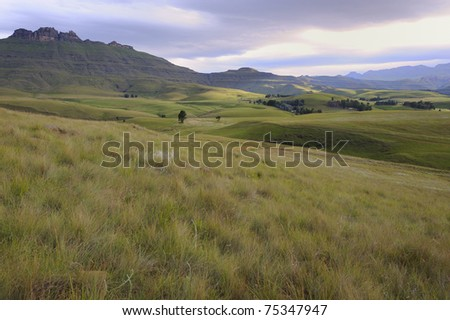 dappled sunlight peeps through cloud above rolling grasslands in the foothills of the drakensberg (Umzimkulu valley). the montane grassland is a rich biology of  diverse forbs, shrubs and grasses. - stock photo