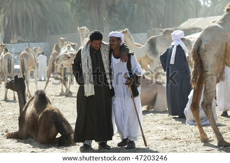 DARAW, EGYPT - DECEMBER 29: Arab people are bargaining at weekly camel and livestock market on December 29, 2009 at Daraw town near the Aswan, Egypt. - stock photo