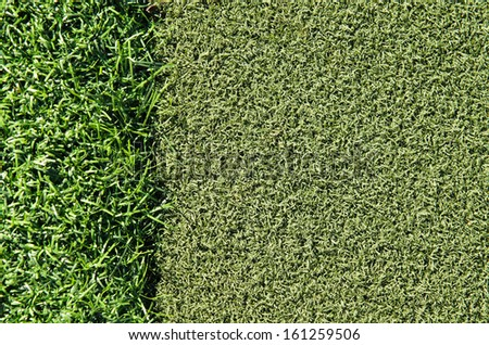 Dark and light green grass on golf putting area - stock photo