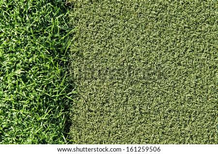Dark and light green grass on golf putting area - stock photo