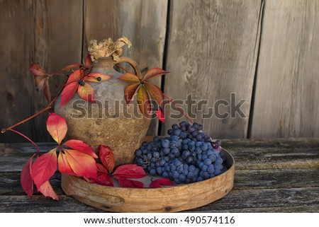 dark blue grapes, bright red liyat wild grape and old jug on old wooden background. beautiful still life, harvest