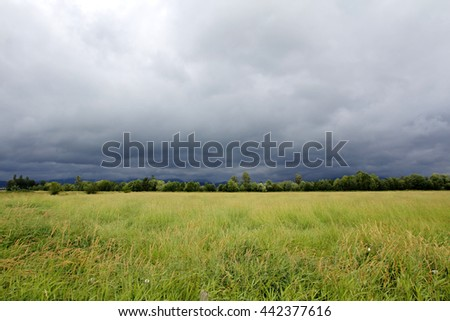 Dark clouds, heavy with rain, stretch across the plains/Rain Clouds/Dark clouds, heavy with rain, stretch across the plains.