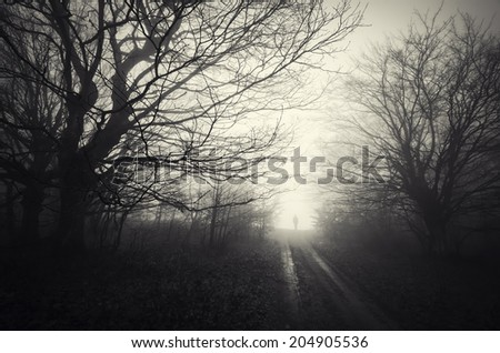 dark forest landscape with ghost - stock photo