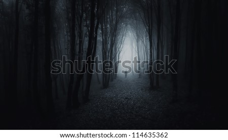 dark forest with man at night - stock photo