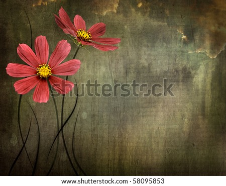 dark grunge background with flowers and space for text or image