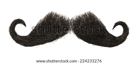 Dark Hairy Mustache Isolated on White Background. - stock photo