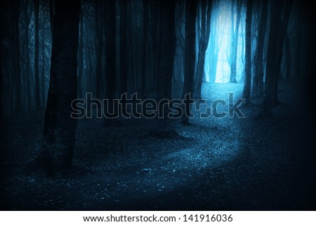 Dark, mystic, magic, fairytale trails into the forest into an autumn foggy day - stock photo