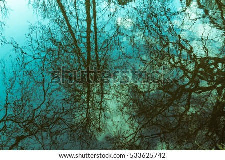 Dark naked branches of trees, sky and clouds reflected in blue water