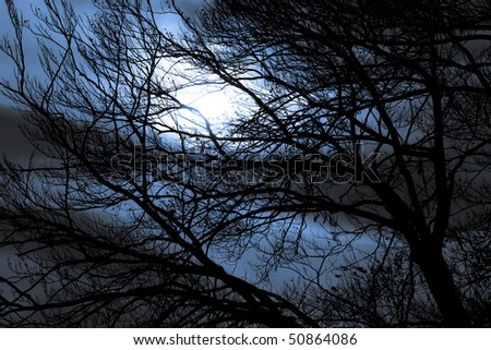 Dark night - stock photo