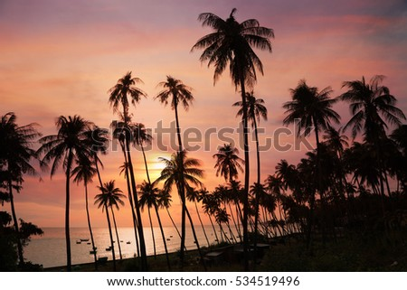 Dark silhouettes of coconut palm trees and amazing cloudy sky on sunset at tropical place Mui Ne, Vietnam