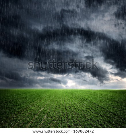 Dark storm clouds over meadow with green grass - stock photo