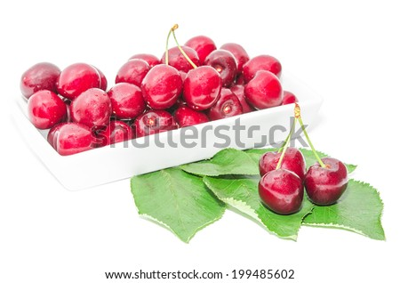 Dark vinous cherry berries served in square white dish on wet green foliage isolated - stock photo