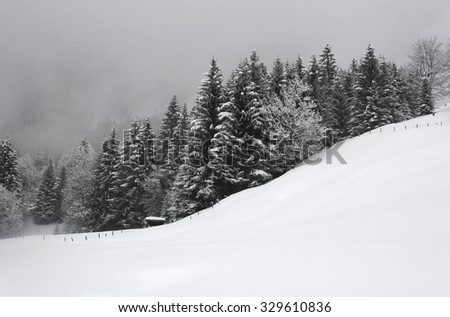 dark winter landscape, snow covered trees and misty mountain backdrop. Christmas winter wonderland. - stock photo