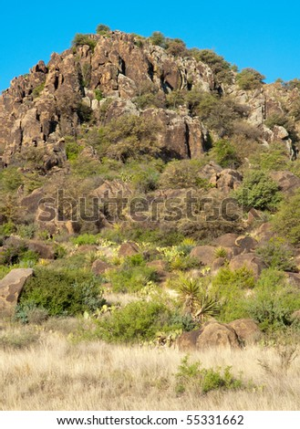 Davis Mountains rock formations