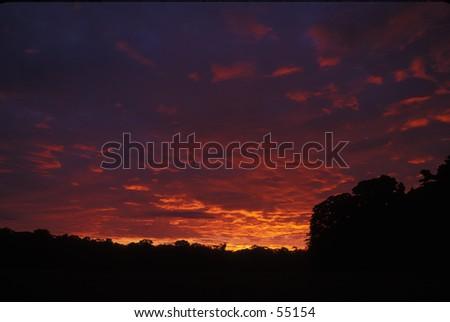 dawn in the amazon - stock photo