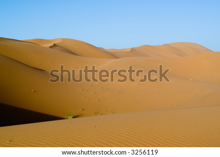 Dawn in the Dunes of the Erg Chebbi Merzouga