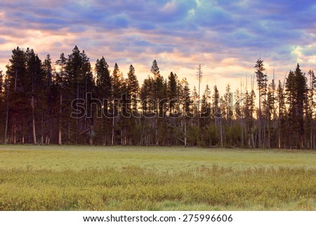 Dawn sky in Yellowstone National Park, Wyoming, USA. - stock photo