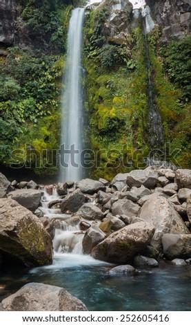 Dawson falls found in some of New Zealand native bush. - stock photo