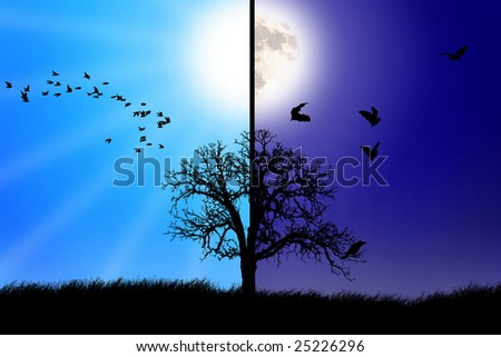 day and night scene - stock photo
