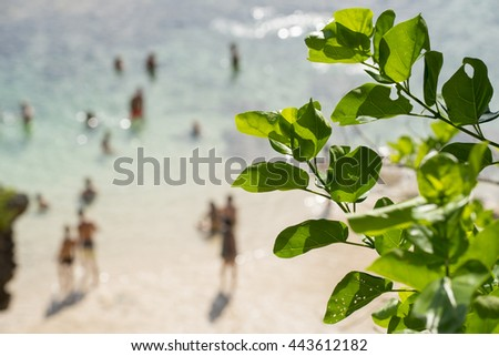 De focused blur background of beach coast with people enjoying summer vacations and green leaves in focus in the foreground.  - stock photo