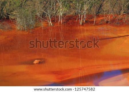 Dead animal found in the Geamana lake's water, polluted by copper mining, Romania - stock photo