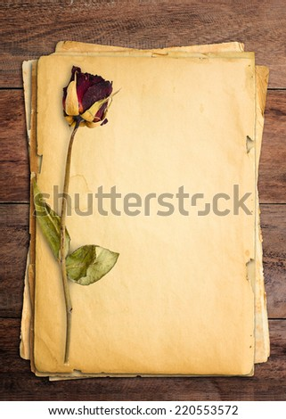 Dead roses put on old paper. - stock photo