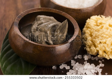 Dead Sea mud and salt in a bowl - stock photo