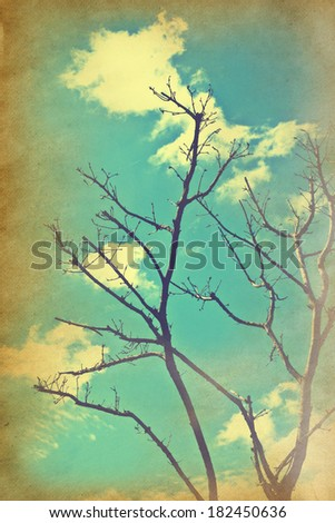 Dead tree and clouds on a textured vintage paper background with grunge stains.  - stock photo