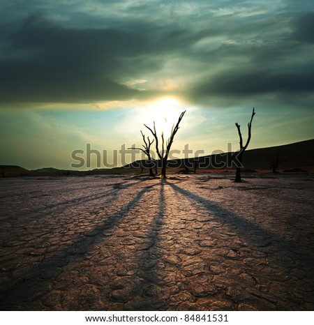 Dead valley in Namibia at sunset - stock photo