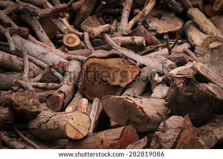 Dead wood must be cut into pieces and to make fuel. - stock photo