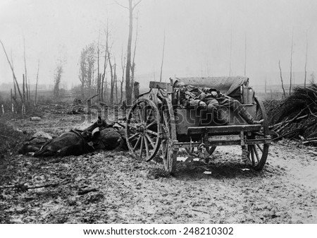 Dead WW1 German Artilleryman and horses. 1914-18.