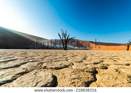 deadvlei low - stock photo