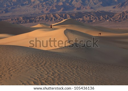 Death Valley is a desert valley located in Eastern California.