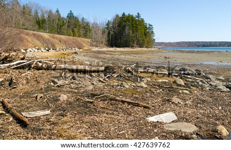 Debris washed into the head of Long Cove at Searsport Maine.