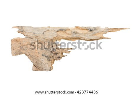 decay wooden piece isolated on white background - stock photo