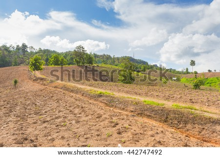 Decimated deforestation mountains with the remnants of trees for farmingin northern part of Thailand