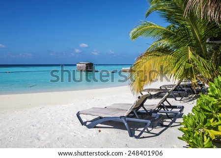 Deck chairs under palm trees on a tropical beach, Maldives - stock photo