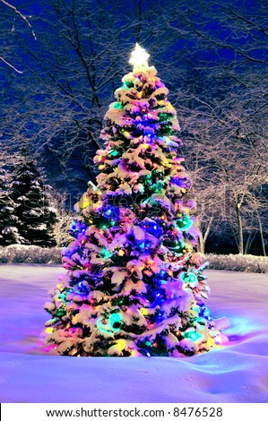 Decorated christmas tree outside with lights covered with snow - stock photo