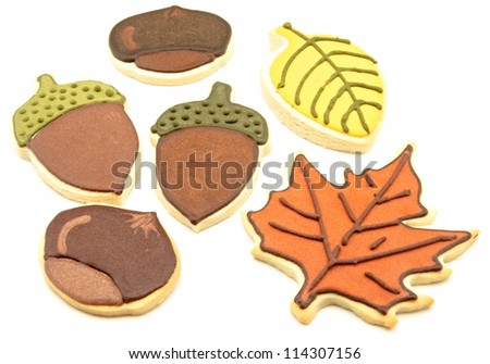 Decorated cookies shaped leaves and fruits of autumn - stock photo