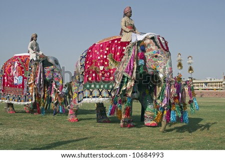 Decorated elephants on parade at the annual elephant festival in Jaipur, India