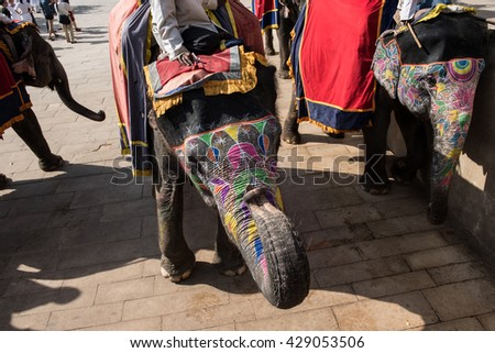 Decorated Elephants Ready For Ride - stock photo