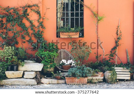Decorated flower patio in summer - stock photo