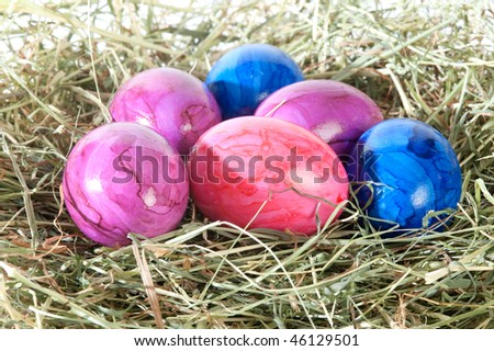 decoration at Easter and brightly colored