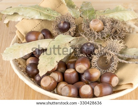 decoration of fall acorns - stock photo