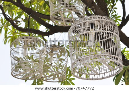 Decoration of light bulb in bird cage for gardening - stock photo
