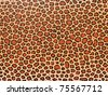 Decorative background - leopard skin pattern. More of this motif & more backgrounds in my port. - stock photo