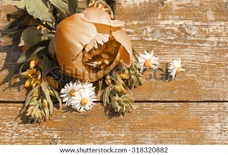 Decorative background with place for text. Wildflowers on an old table. Space for text. Art processing in terracotta color. - stock photo