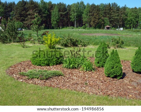 Decorative flower bed mulched with pine tree bark     - stock photo