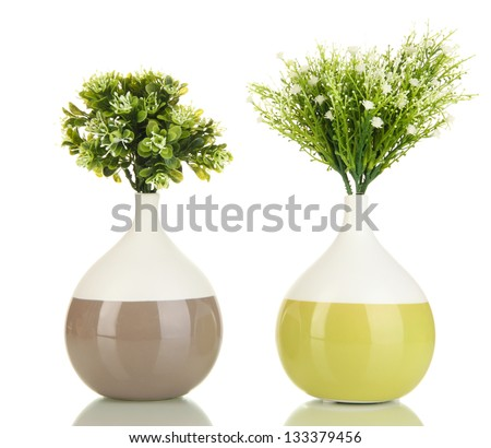 Decorative flowers in vases isolated on white - stock photo
